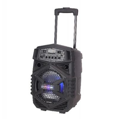 Bluethooth zvučnik TSP-110