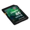 Mem. kartica SD10V/16GB